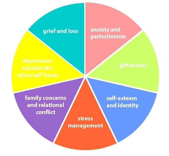 Counselling_Personal Wheel Image