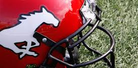 a red helmet with stampedes logo