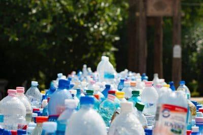 Bottles for Bottle Drive Photo