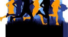 Cross Country Running Image
