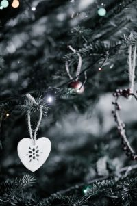 Heart ornament hanging on pine tree