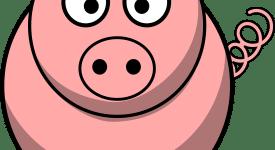 Cartoon image of piglet