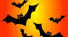Illustration of bats flying in orange sky