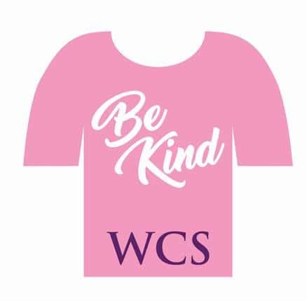 Pink Shirt Be Kind Graphic
